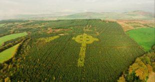 croix celtique foret irlande