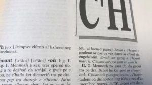 le-procureur-et-la-mairie-de-rennes-refuse-le-c-h-d-un-prenom-breton