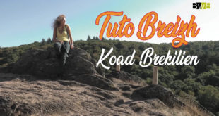 Tuto Breizh : Koad Brekilien / La forêt de Brocéliande
