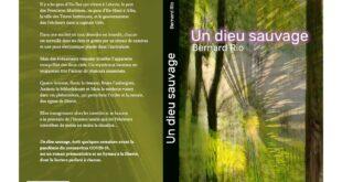 """""""Un dieu sauvage"""", de Bernard Rio"""