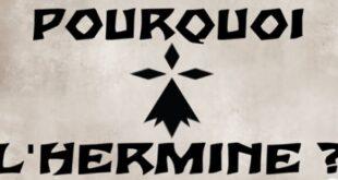 Pourquoi l'HERMINE est-elle le SYMBOLE de la BRETAGNE ?